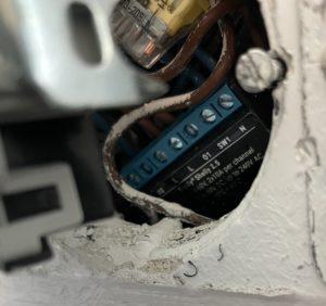 Eingebauter Shelly 2.5 hinter Rolladenschalter in Wanddose